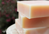 Mango Citrus Shampoo Bar by Apple Valley Natural Soap
