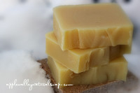 Winter Skin Saver Body Bar - by Apple Valley Natural Soap
