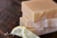 Lemon Basil Limited Edition Shampoo Bar by Apple Valley Natural Soap