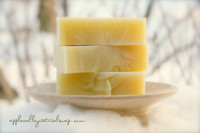 Wild North Shampoo and Body Bar by Apple Valley Natural Soap
