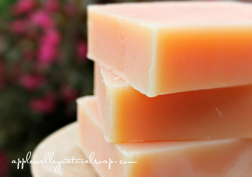 Coconut Milk and Citrus Shampoo and Body Bar by Apple Valley Natural Soap