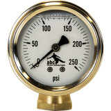 0-250 PSI Pressure Gauge with Male and Female brass fittings.