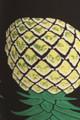 Buttery Soft Green Pineapple High Waisted Leggings - EEVEE