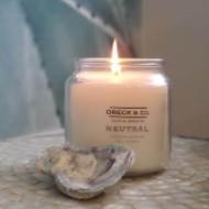 neutral-oyster-190.jpg