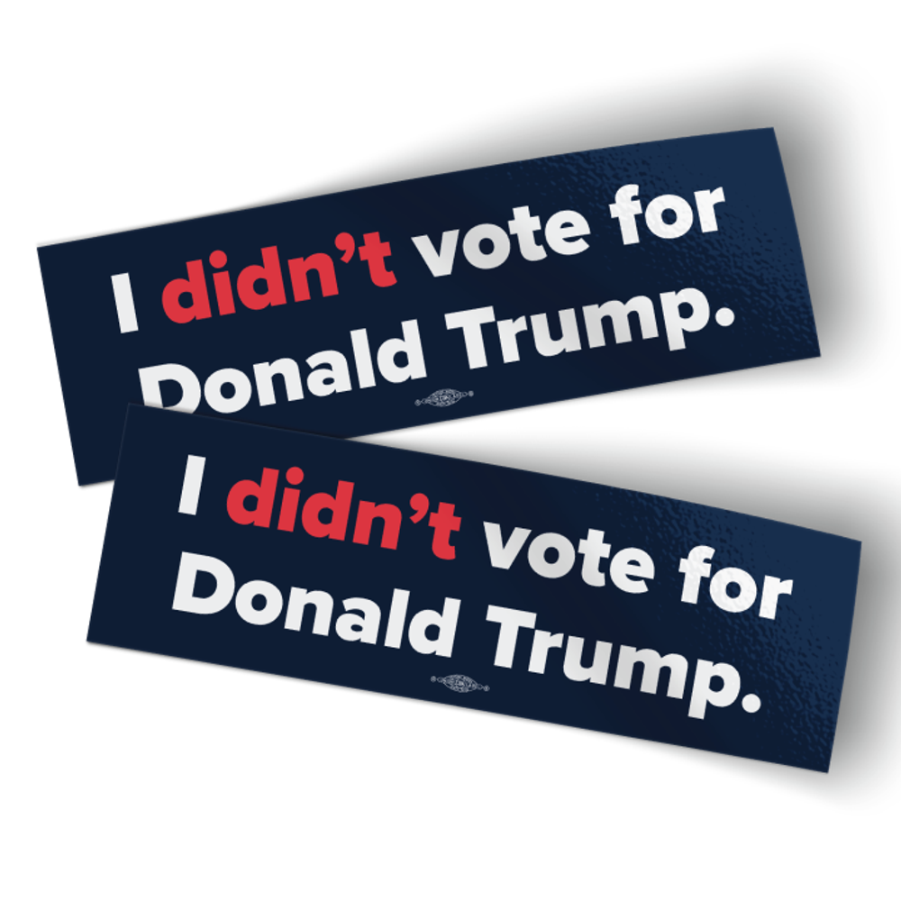"""I Didn't Vote For Donald Trump (8"""" x 2.5"""" Vinyl Sticker -- Pack of Two!)"""