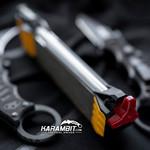 Work Sharp Guided Field Sharpener (WSGFS221)