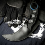 Painted Honshu Doppler Phase 4 CS GO Karambit (CSGODopplerPhase4)