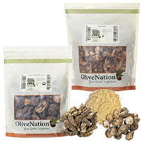 bulk mushrooms for sale