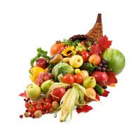 seasonal fall flavorings for sale