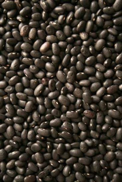 Premium Black Turtle Beans