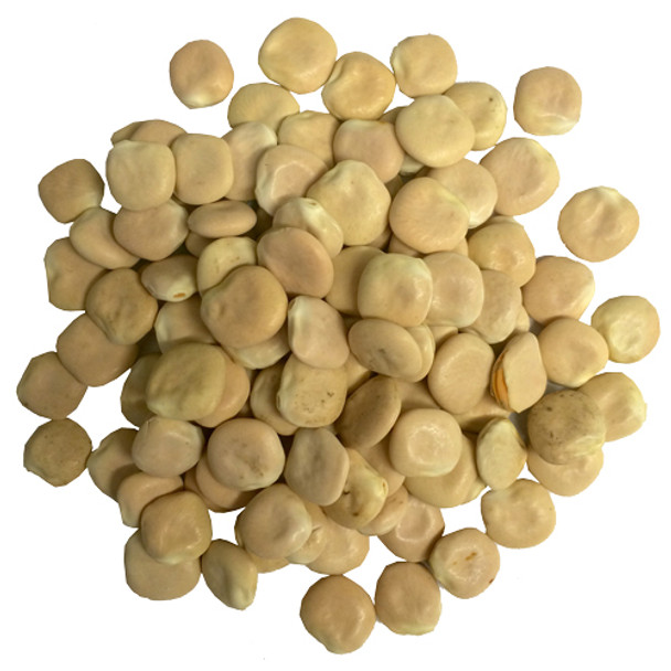 Dried Lupini Beans