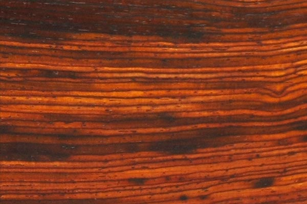 wood-sample-cocobolo-600x400.jpg