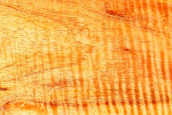 wood-sample-narrow-leaf-wattle-600x400.jpg