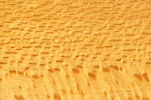 wood-sample-silky-oak-600x400.jpg
