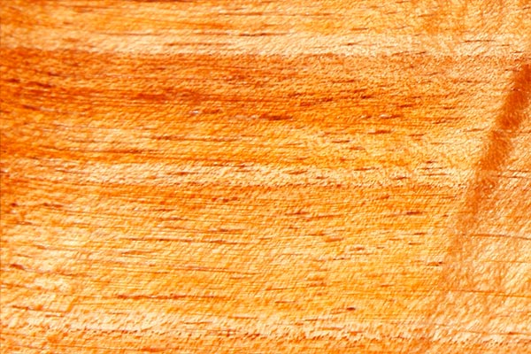 wood-sample-tasmanian-blackwood-600x400.jpg