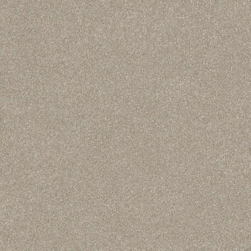 Shaw Splendid 7A9V7 Residential Carpet