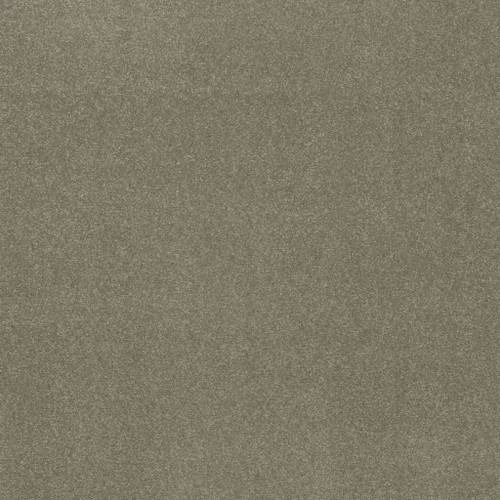 Shaw Distinguished 7A9W2 Residential Carpet