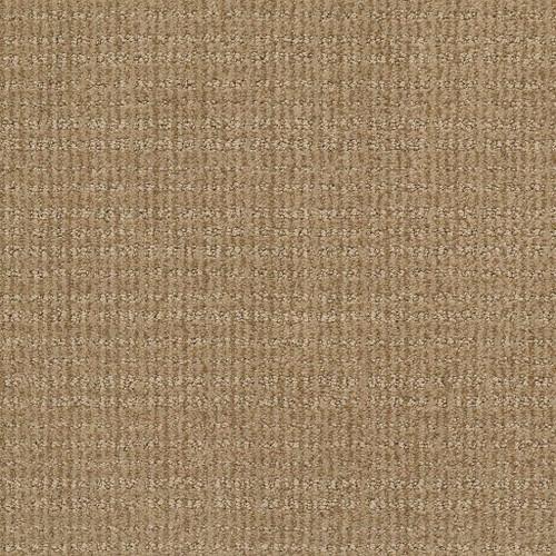 Shaw Makes Sense 7B9B9 Residential Carpet