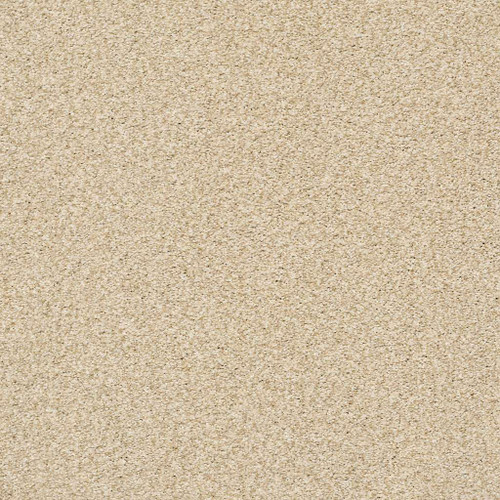 Shaw Homecoming (T) 7B9C5 Residential Carpet