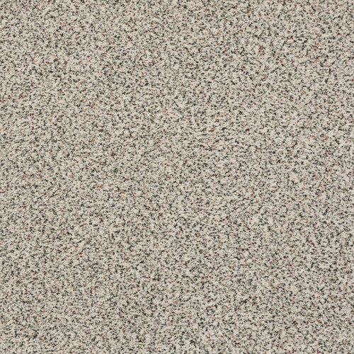 Shaw Homecoming (A) 7B9C6 Residential Carpet