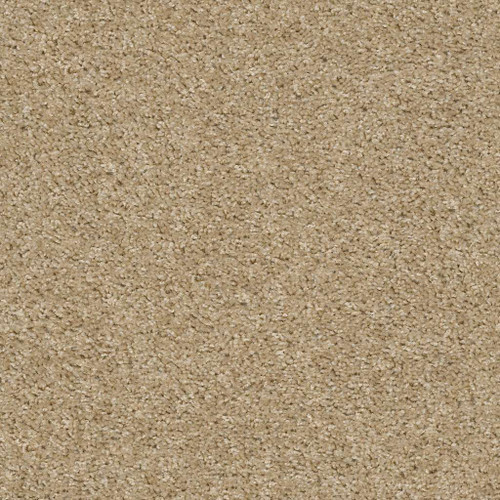 Shaw Sunny Days 7A9V10 Residential Carpet