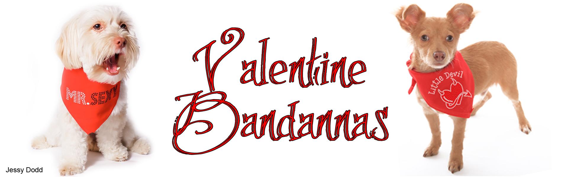 2020-valentine-bandannajd.jpg
