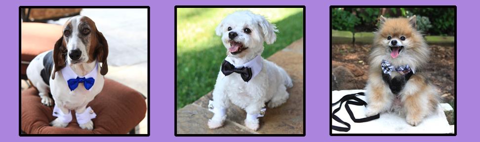 bow-ties.jpg