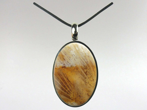 Oval Pendant - Coral Fossil