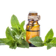 Essential Oils, Possible Dangers, Options