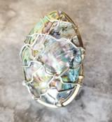 Abalone Ring Lrg