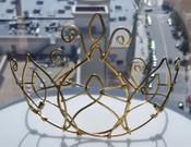 Fc Henna Crown