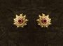 Beautiful Design New Earrings