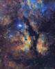 IC 1318 Butterfly Nebula by Douglas J Struble