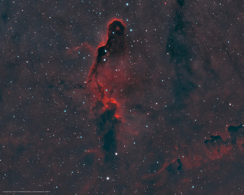 IC 1396 Douglas J Struble