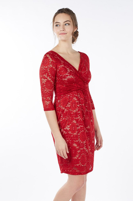 3ea0403537b Chantel Nursing Dress