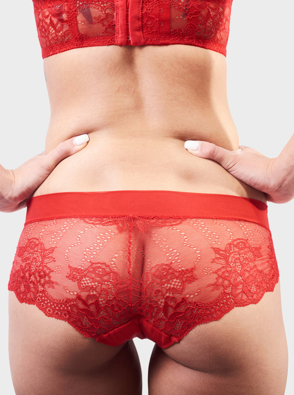 Sweetheart All Over Lace Brief