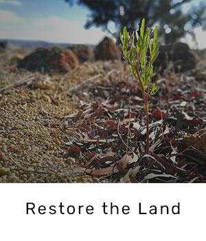 restore-the-land.jpg