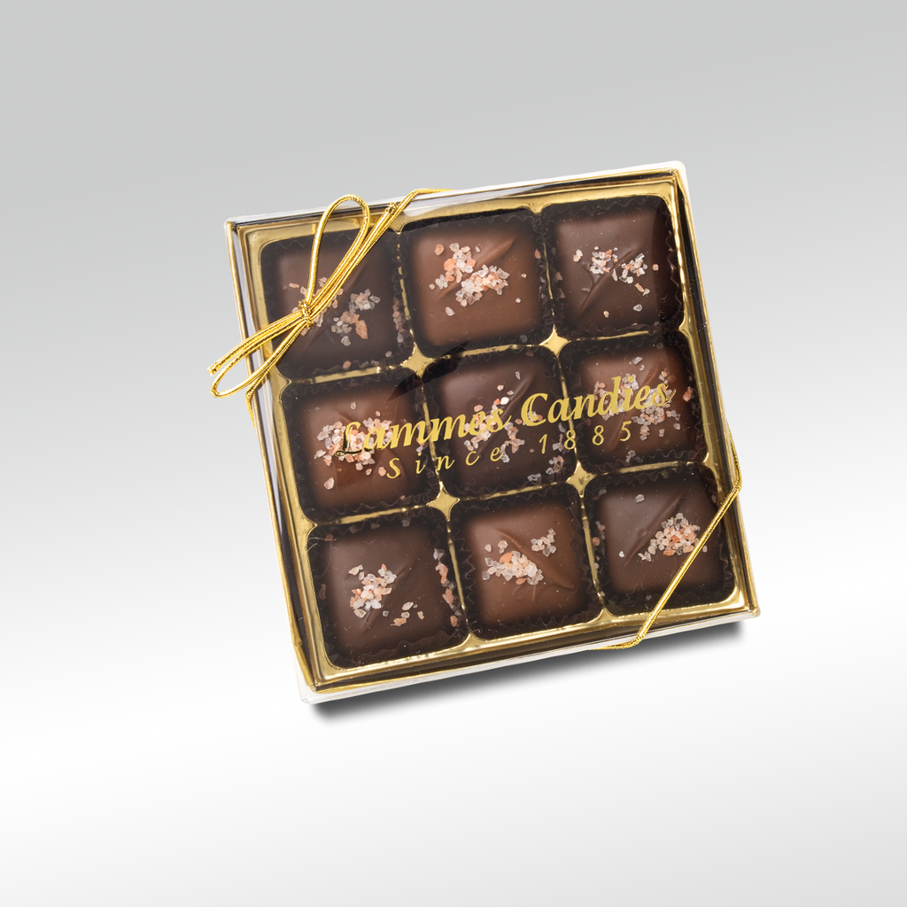 Hawaiian Salted Dark Chocolate Caramels, 9 Piece