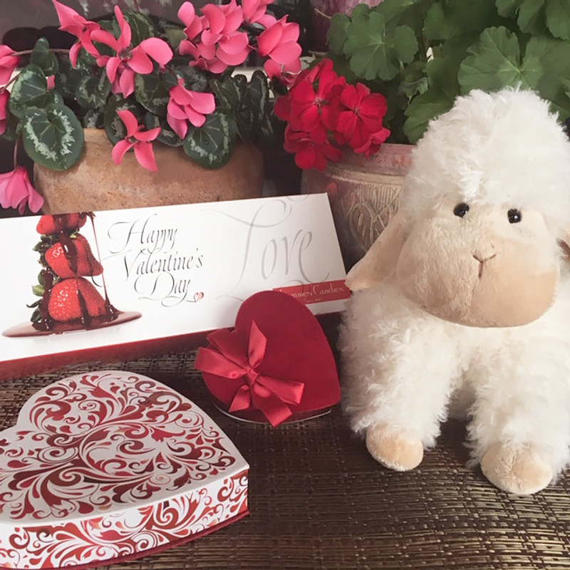 Valentine's Day at Lammes - What you need to know!