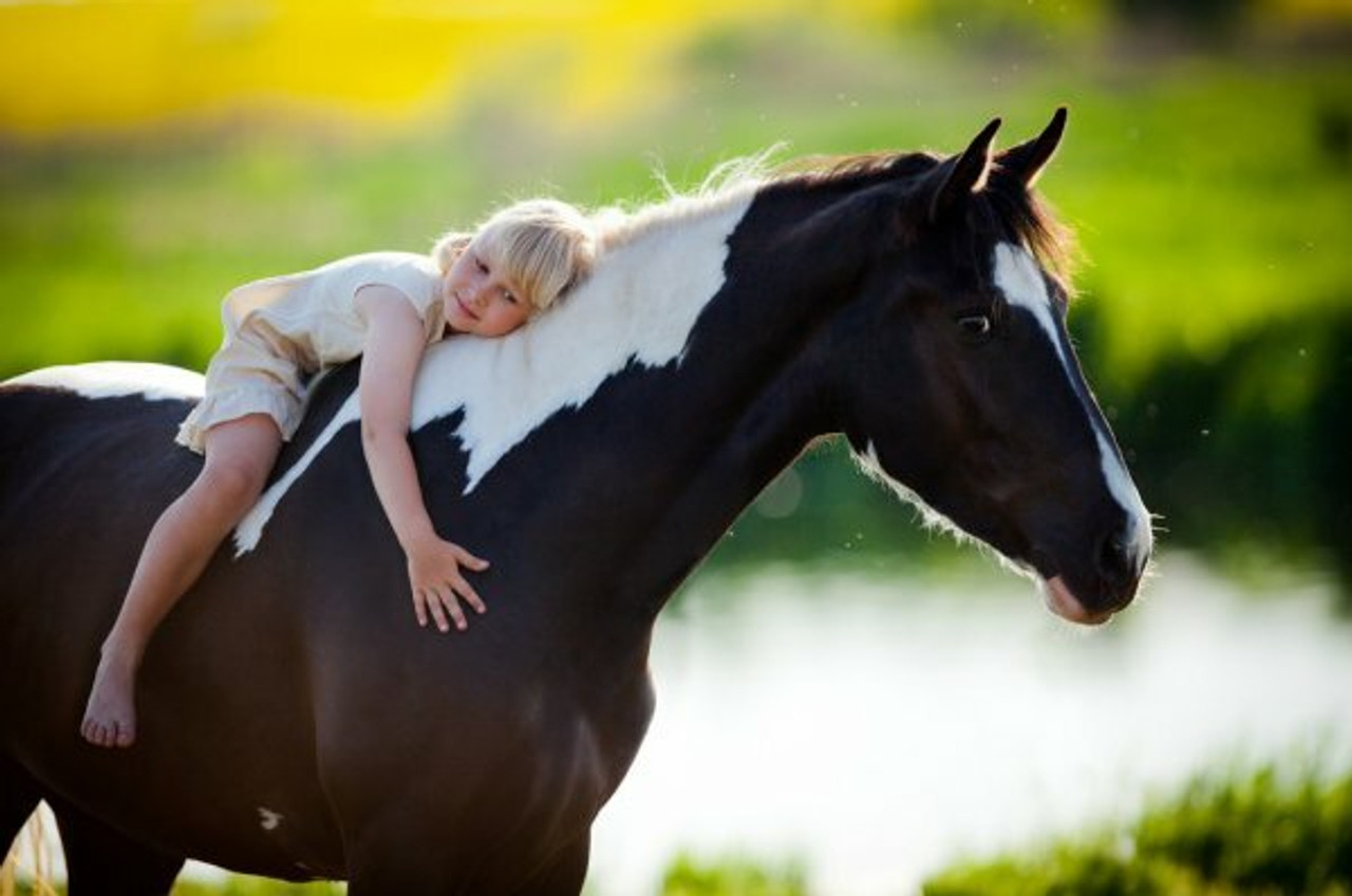 Kids Corral Tack Youth n Pony
