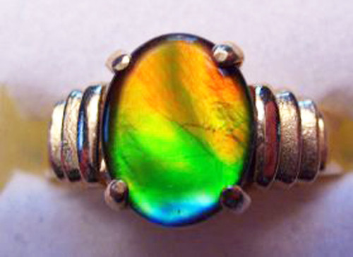 14K Ammolite Oval Ribbed Ring 8GR