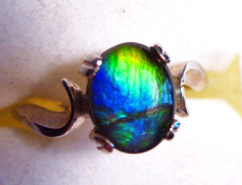 14KW Ammolite Oval  Ring 9GR