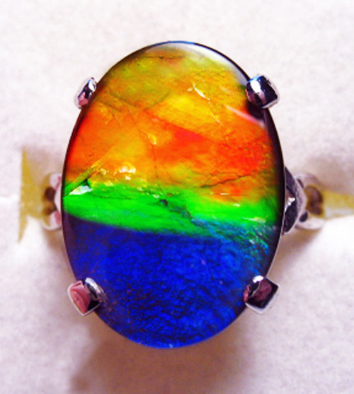 14KW Ammolite Oval  Ring 11GR