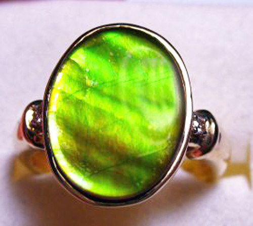 14K Ammolite Oval Ring 19GR