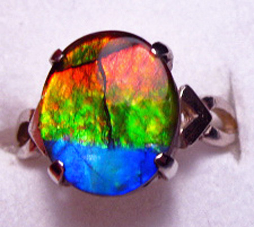 14KW Ammolite Oval  Ring  26GR