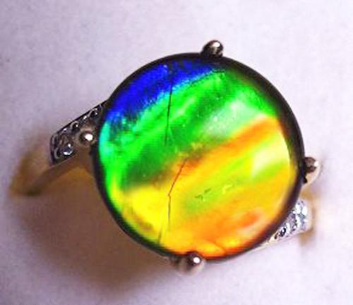10K Ammolite Round Ring 57GR