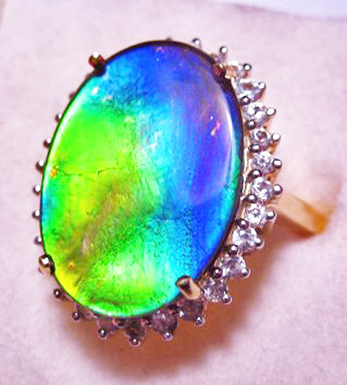 10K Ammolite Oval Ring 58GR