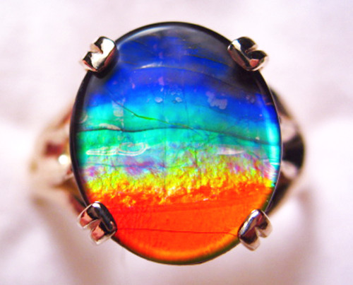 14K Ammolite Oval Mens Ring 59MGR