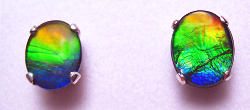 Sterling Silver Ammolite Oval Stud Earrings 49SE