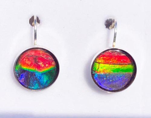 Sterling Silver Round Ammolite Drop Dangle Earrings 12SLE